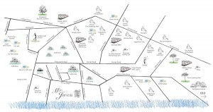 mon jervois location map