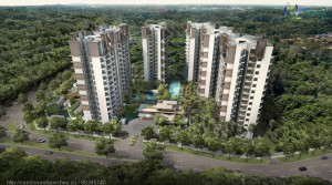 Buy a House Close To the Nature with Skywoods
